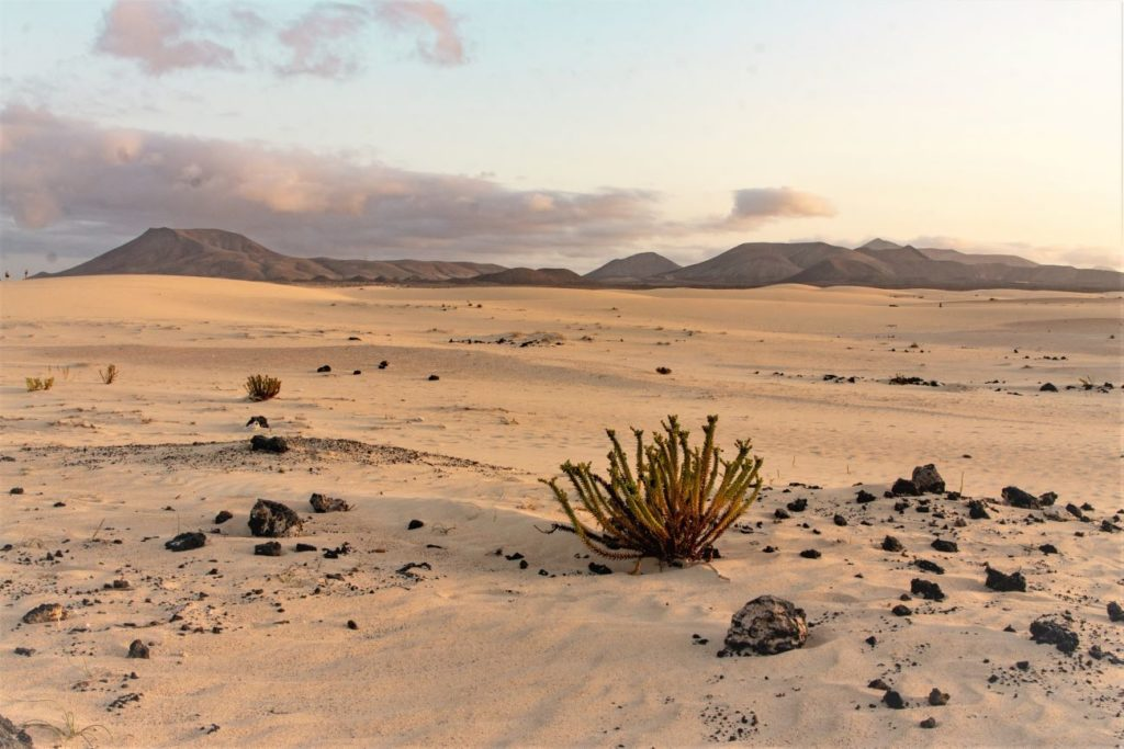 Parco-naturale-dune-Corralejo-Fuerteventura