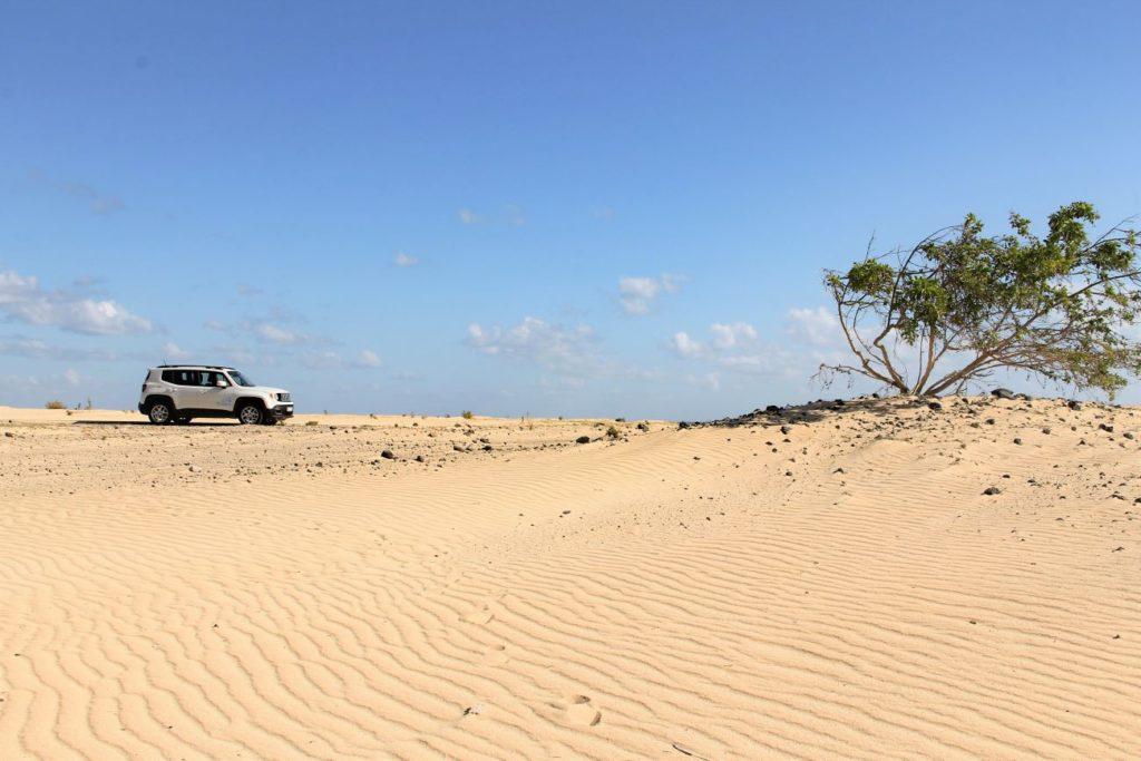 parco-naturale-dune-di-Corralejo