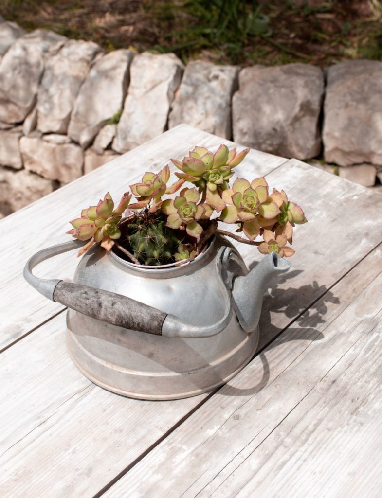 fiori-tavolo-masseria