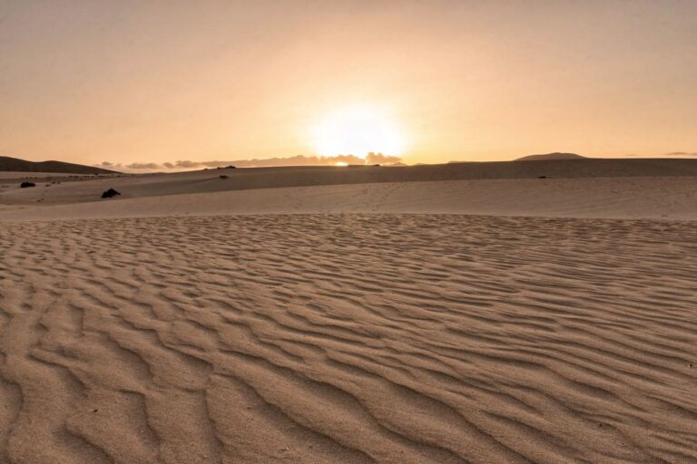 dune-di-corralejo