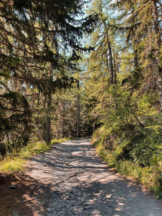 lago-d-arpy-sentiero