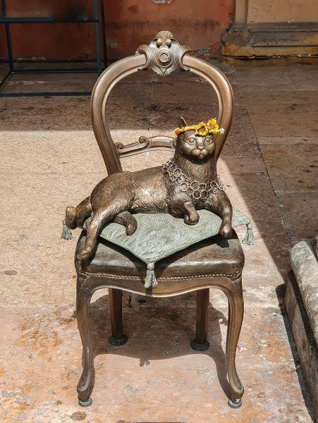gatto-san-giovanni-in-persiceto